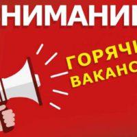 Отдел по делам молодежи администрации муниципального образования город Новороссийск поможет тебе трудоустроиться на предприятие, расположенное на территории Азово-Черноморского побережья.
