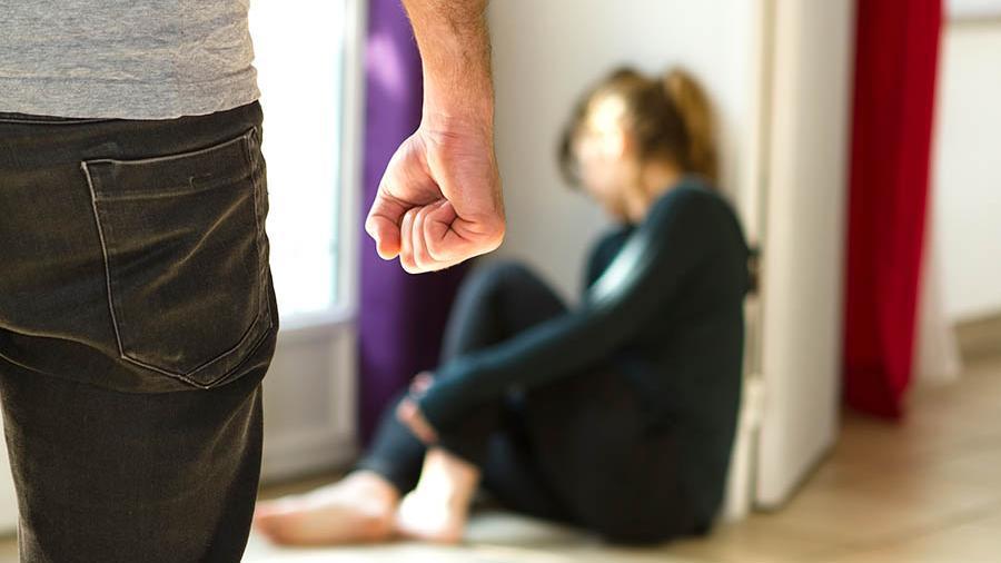 Общественное обсуждение законопроекта «О профилактике семейно-бытового насилия»