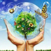Открытый интернет-конкурс «Экология. Природа. Человек»
